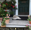Westchester NY Flower Delivery